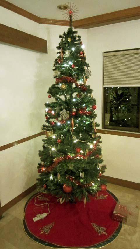 Kerstboom Willem En Riet In Manila